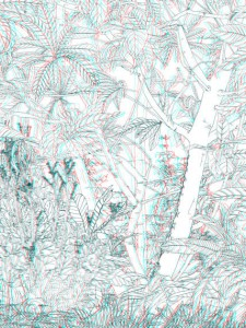 Jungle anaglyphe